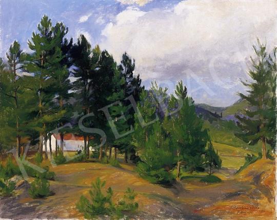 Benkhard Ágost - Felsőbánya | 5. Aukció aukció / 44 tétel