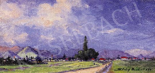 Sztelek, Norbert - The View of Nagybánya | 5th Auction auction / 159 Lot