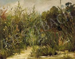 Ismeretlen festő, 19. század vége - Kertvége
