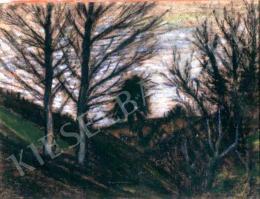 Nagy István - Esti erdő