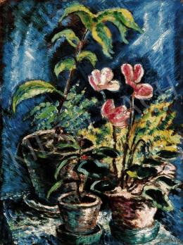 Schadl, János - Still - Life with Cyclamen