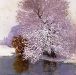 Molnár Z., János - Snowy Tree on the Lakeside