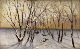 Aggházy Gyula - Téli táj