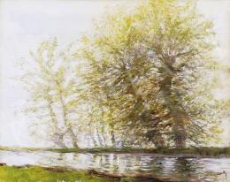 Mednyánszky László - Fák a folyó mentén