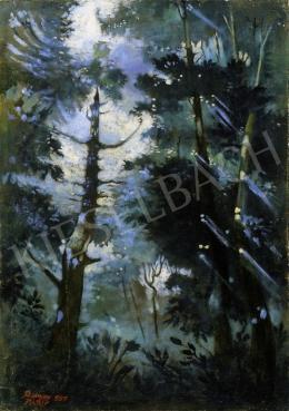 Remsey Jenő György - Fények erdőben