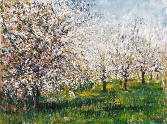Halápy János - Cseresznyefa-virágzás | 21. Aukció aukció / 1 tétel