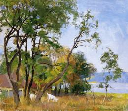 Benkhard Ágost - Tájkép folyóparton