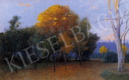 Zeller Mihály - Délutáni fények a parkban