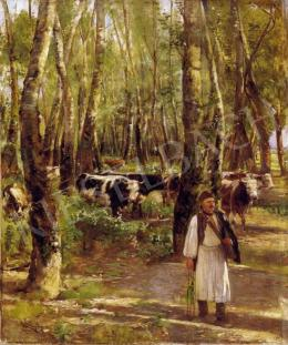 Aggházy, Gyula - Lights in the Grove