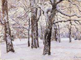 Szlányi Lajos - Margitsziget télen