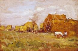Deák Ébner, Lajos - In the Field