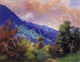 Sztelek, Norbert - Hills in Nagybánya