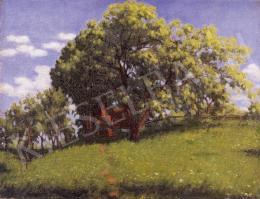Börtsök Samu - Virágzó fa
