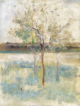 Ferenczy Károly - Virágzó fa