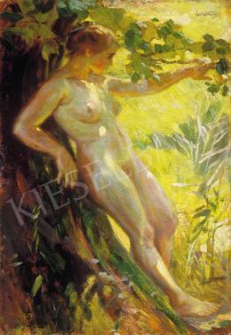 Cserna Károly - Akt a szabadban