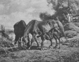 Lotz, Károly - Pasturing Horses