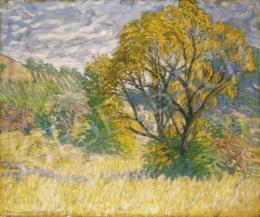 Boromisza Tibor - Tavaszi színek