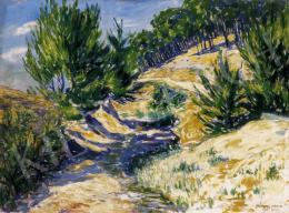 Lakatos Artúr - Napsütötte domboldalon, 1921
