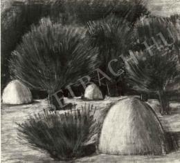 Nagy István - Tisztás boglyákkal