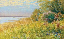 Poll Hugó - Virágok a vízparton