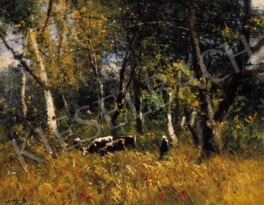 K. Spányi Béla - Pipacsos erdőszélen | 20. Aukció aukció / 5 tétel