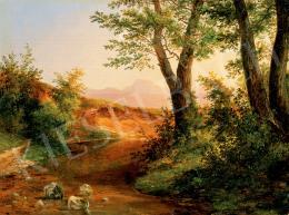 Brodszky, Sándor - Sunlit Brookside