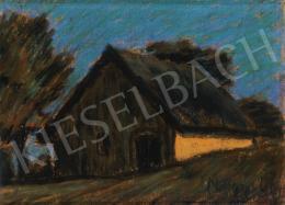 Nagy István - Ház kék égbolt előtt