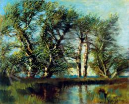 Mednyánszky, László - Brookside Trees