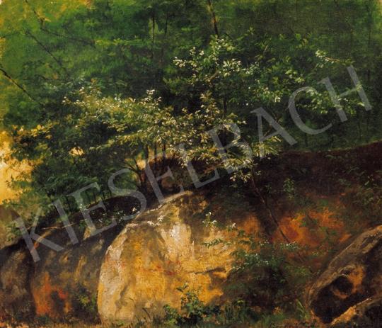 Brodszky Sándor - Erdei sziklák | 20. Aukció aukció / 15 tétel