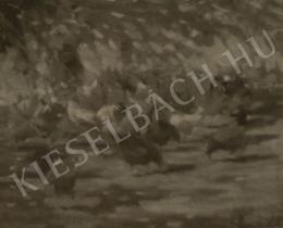 Kieselbach Géza - Baromfiudvar, 1957