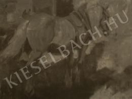 Kieselbach Géza - Ló, 1927